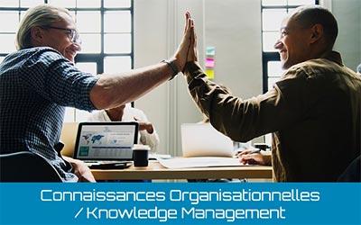 7.1.6 Connaissances Organisationnelles: Comprendre et en Tirer Profit